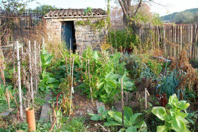 Jardin nourricier et cabane de jardin en pierre sèche.